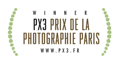 PX3 Winner 2013